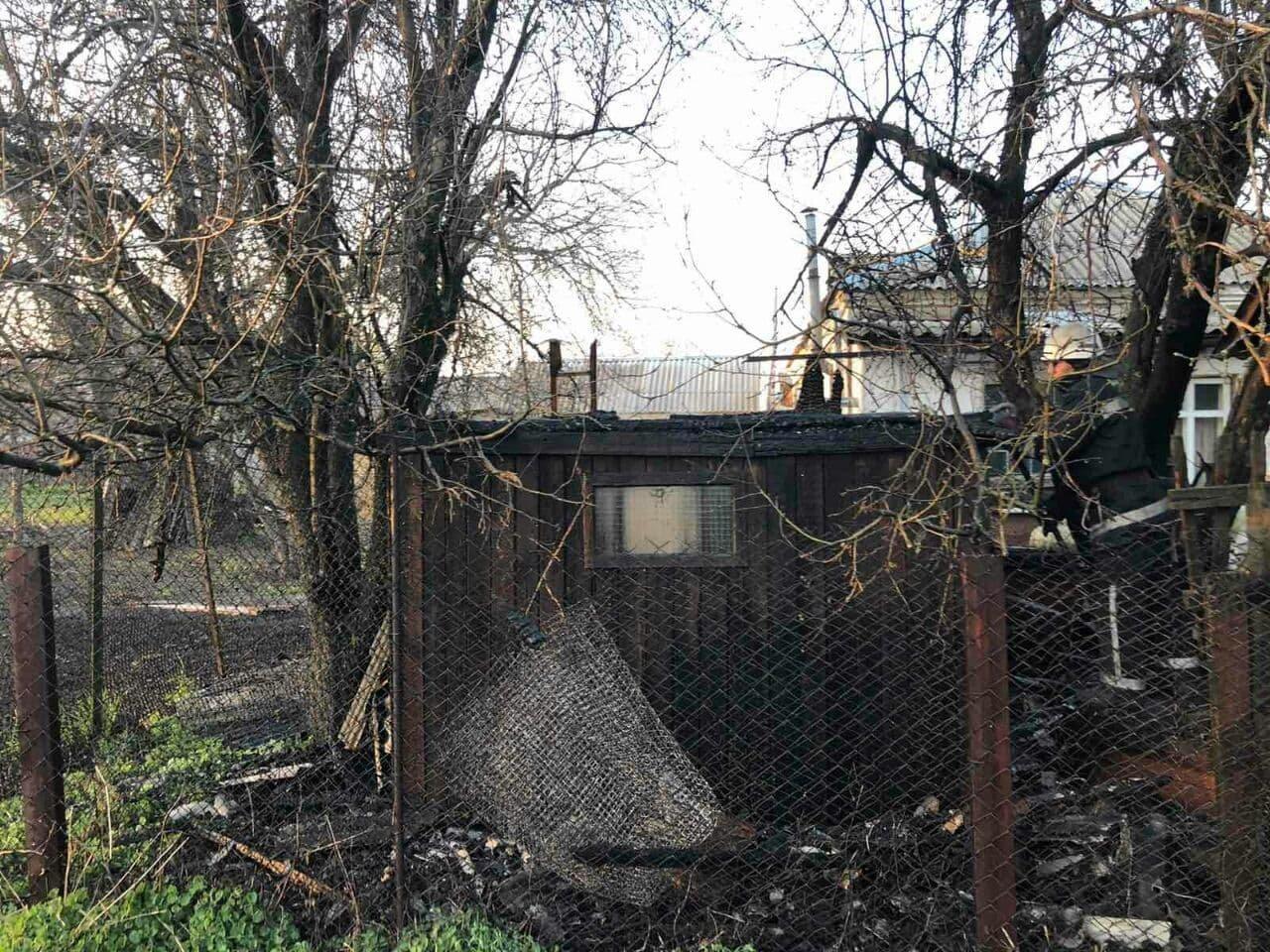 В Панютино загорелась деревянная хозпостройка, фото-1