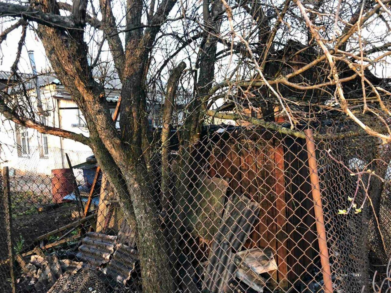 В Панютино загорелась деревянная хозпостройка, фото-4