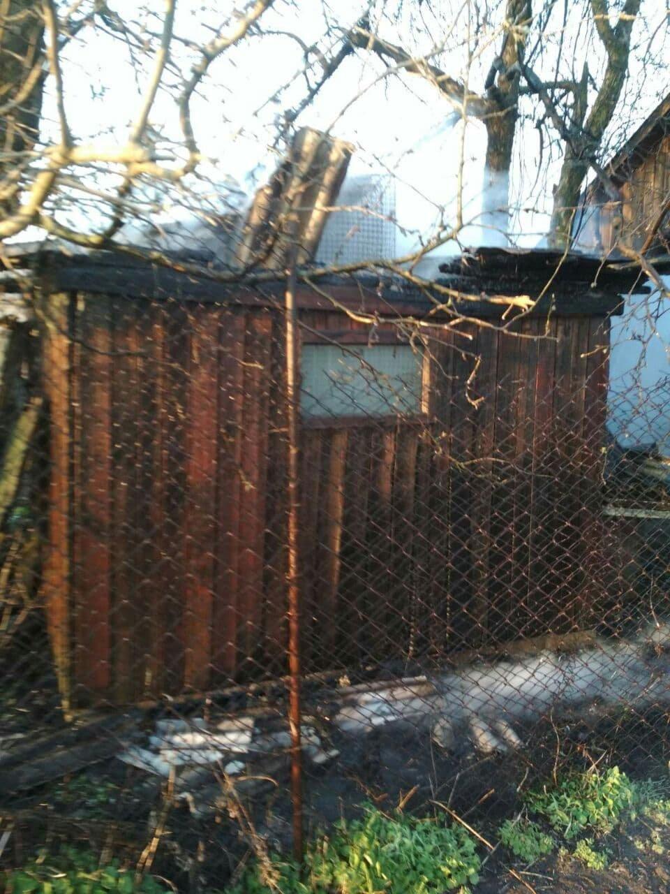 В Панютино загорелась деревянная хозпостройка, фото-6
