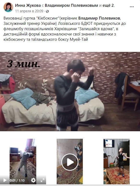 Лозовские боксеры присоединились к акции внешкольников Харьковщины «Оставайся дома» , фото-1