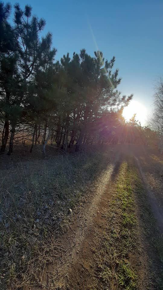 Для жителей Лозовщины планируют создать брошюру о живописных местах (ФОТО), фото-18