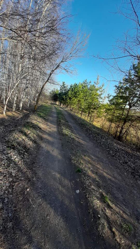 Для жителей Лозовщины планируют создать брошюру о живописных местах (ФОТО), фото-20