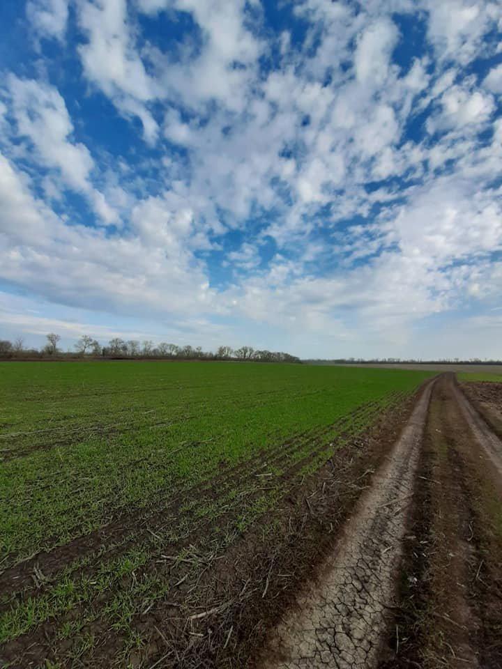 Для жителей Лозовщины планируют создать брошюру о живописных местах (ФОТО), фото-21