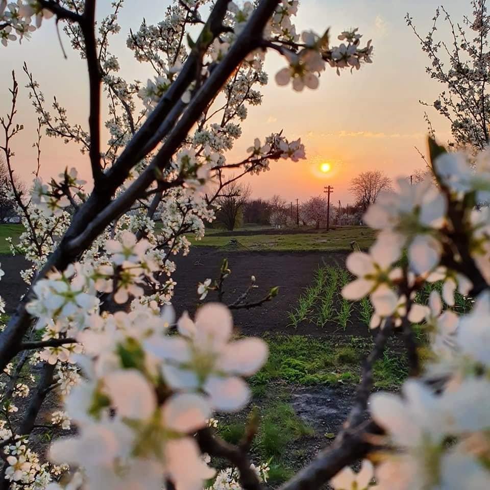 Для жителей Лозовщины планируют создать брошюру о живописных местах (ФОТО), фото-1