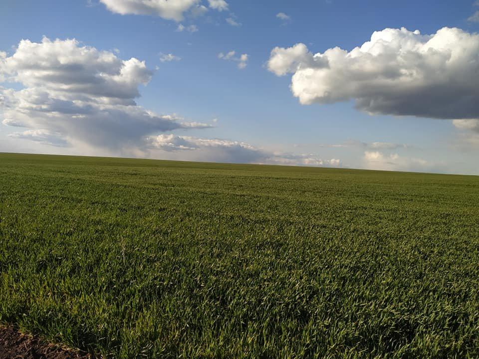 Для жителей Лозовщины планируют создать брошюру о живописных местах (ФОТО), фото-17