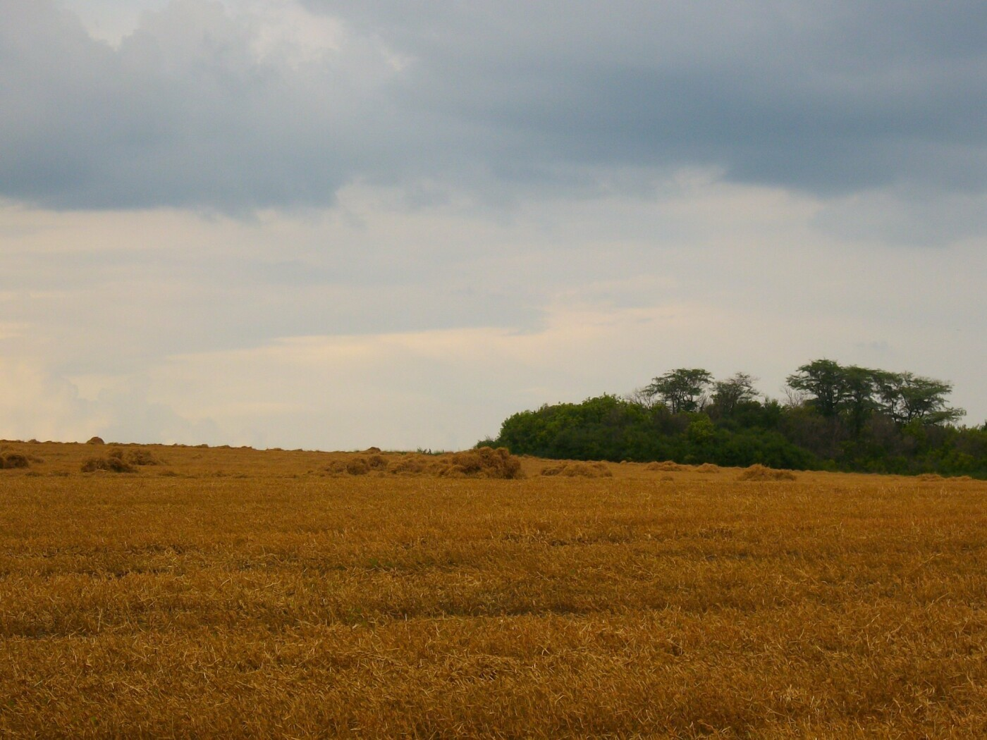 Для жителей Лозовщины планируют создать брошюру о живописных местах (ФОТО), фото-5