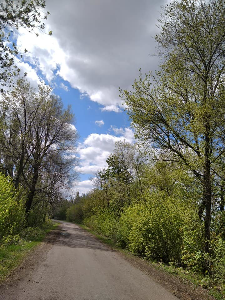 Для жителей Лозовщины планируют создать брошюру о живописных местах (ФОТО), фото-25