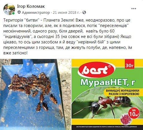 Набег на многоэтажки: лозовчане жалуются на нашествие тараканов, фото-5