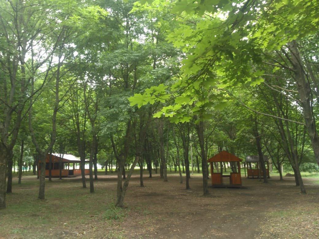 Летние площадки Лозовщины, фото-19