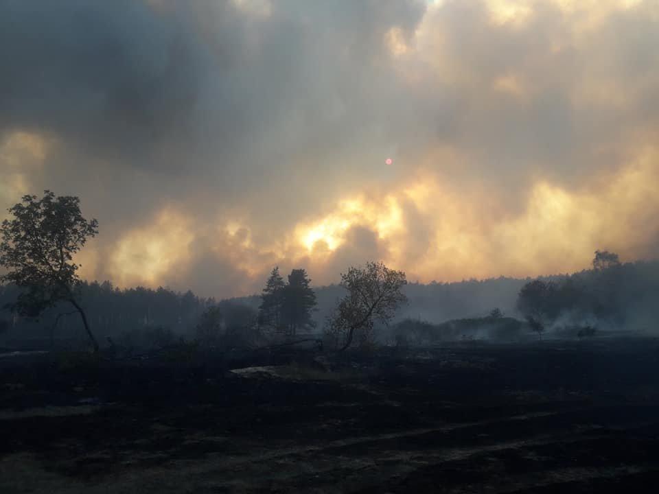 На Харьковщине тракторист спас 20 жилых домов от огня, фото-6