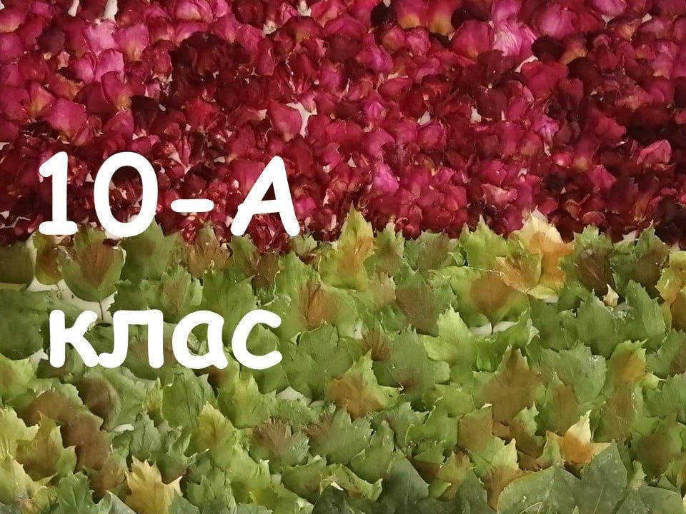 На Лозовщине Панютинский лицей хочет установить новый рекорд, фото-24