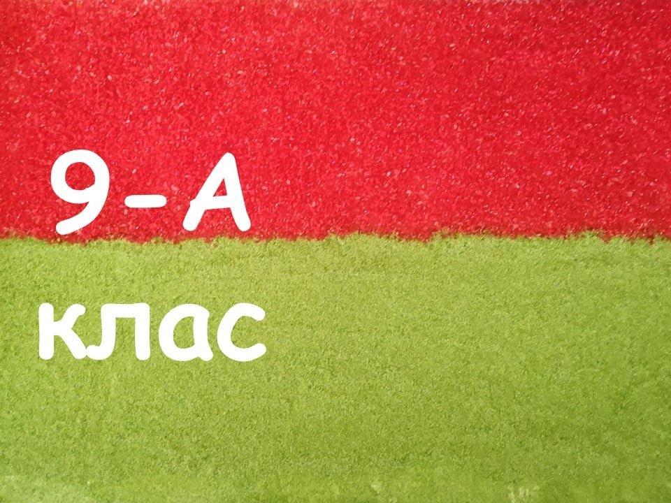 На Лозовщине Панютинский лицей хочет установить новый рекорд, фото-25