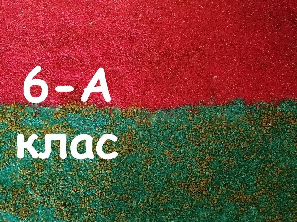 На Лозовщине Панютинский лицей хочет установить новый рекорд, фото-17