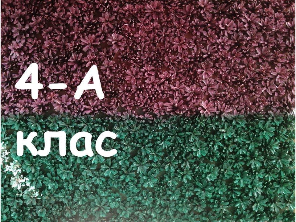 На Лозовщине Панютинский лицей хочет установить новый рекорд, фото-10