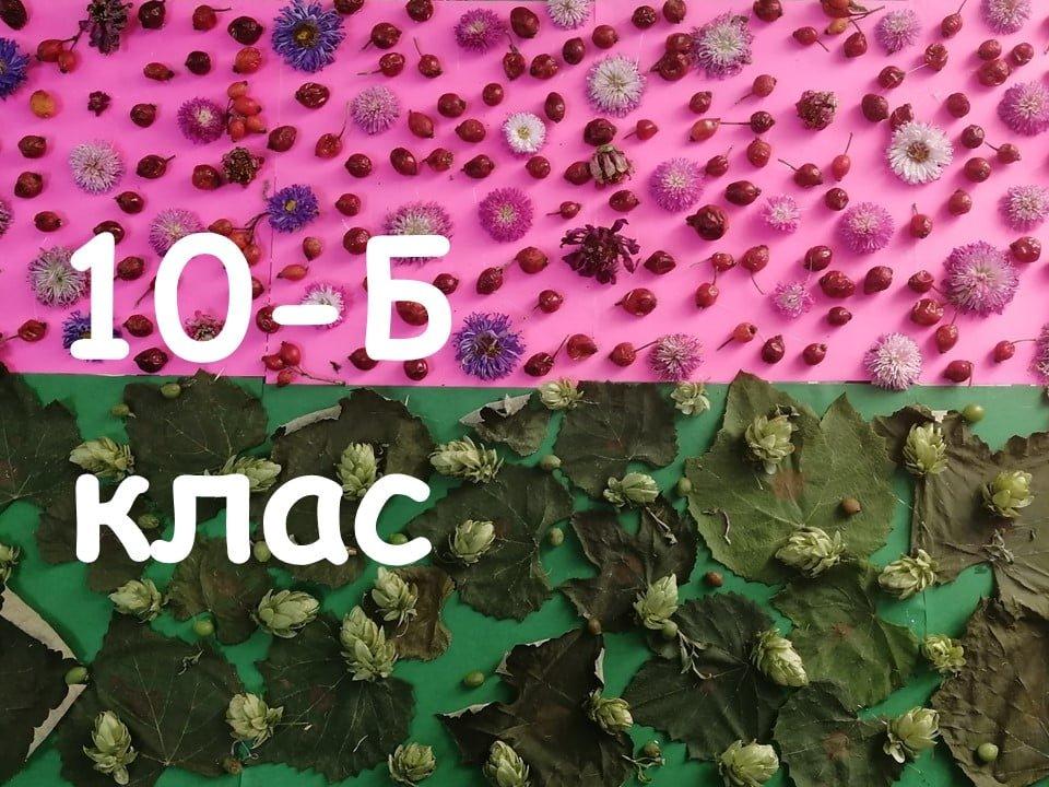На Лозовщине Панютинский лицей хочет установить новый рекорд, фото-26