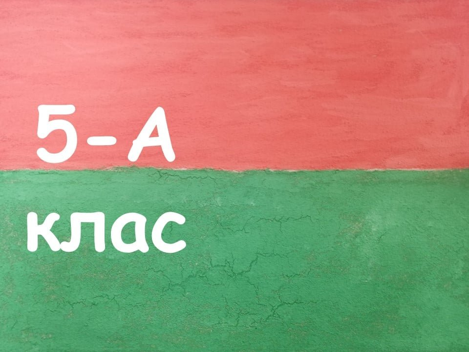 На Лозовщине Панютинский лицей хочет установить новый рекорд, фото-13