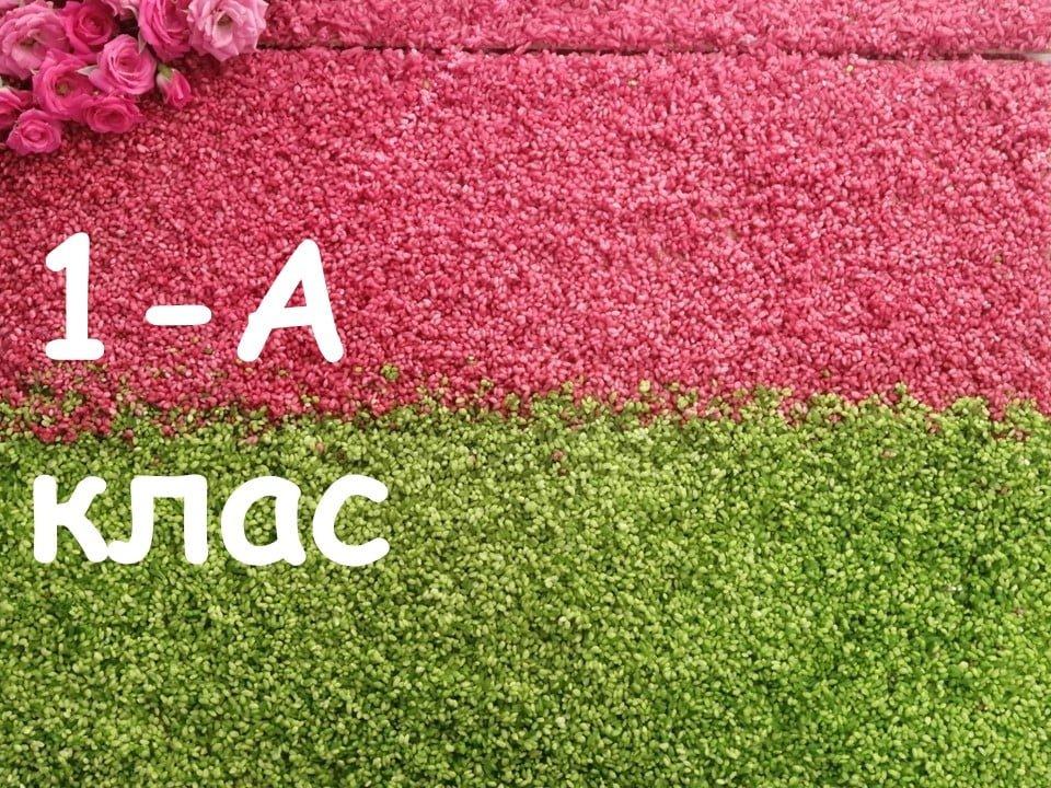 На Лозовщине Панютинский лицей хочет установить новый рекорд, фото-2