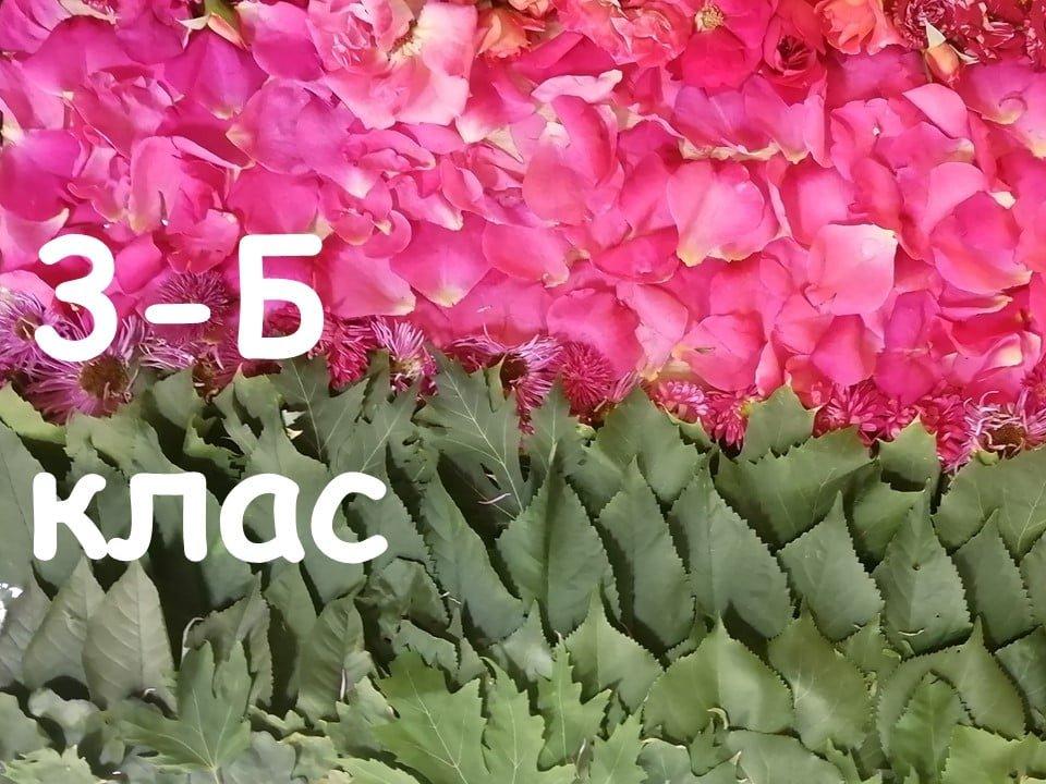 На Лозовщине Панютинский лицей хочет установить новый рекорд, фото-7