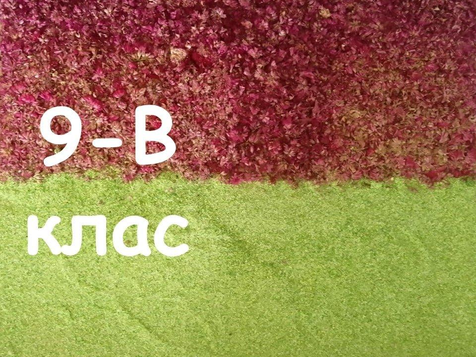 На Лозовщине Панютинский лицей хочет установить новый рекорд, фото-22