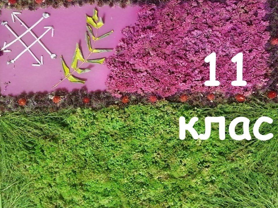 На Лозовщине Панютинский лицей хочет установить новый рекорд, фото-27