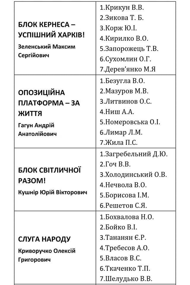 Депутаты по округам: кто хочет представлять ваши интересы в Лозовском горсовете, фото-18