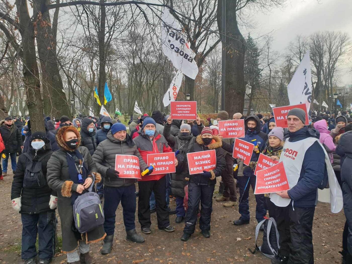 "Предприниматели Лозовщины протестуют на ""Податковому майдані"" (ОБНОВЛЯЕТСЯ), фото-4"