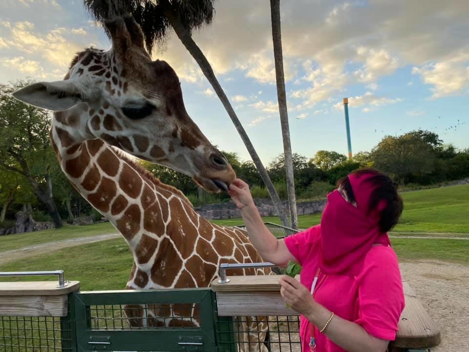 Отдых и «блогерство»: путешествие эмигрантки из Лозовой  Аллы Свистун по Флориде, фото-4
