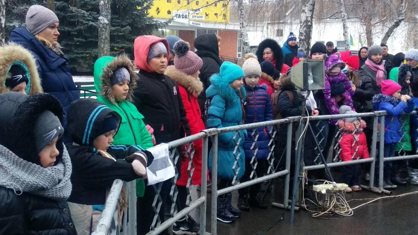 В Лозовой одновременно открыли 2 новогодние ёлки, фото-16