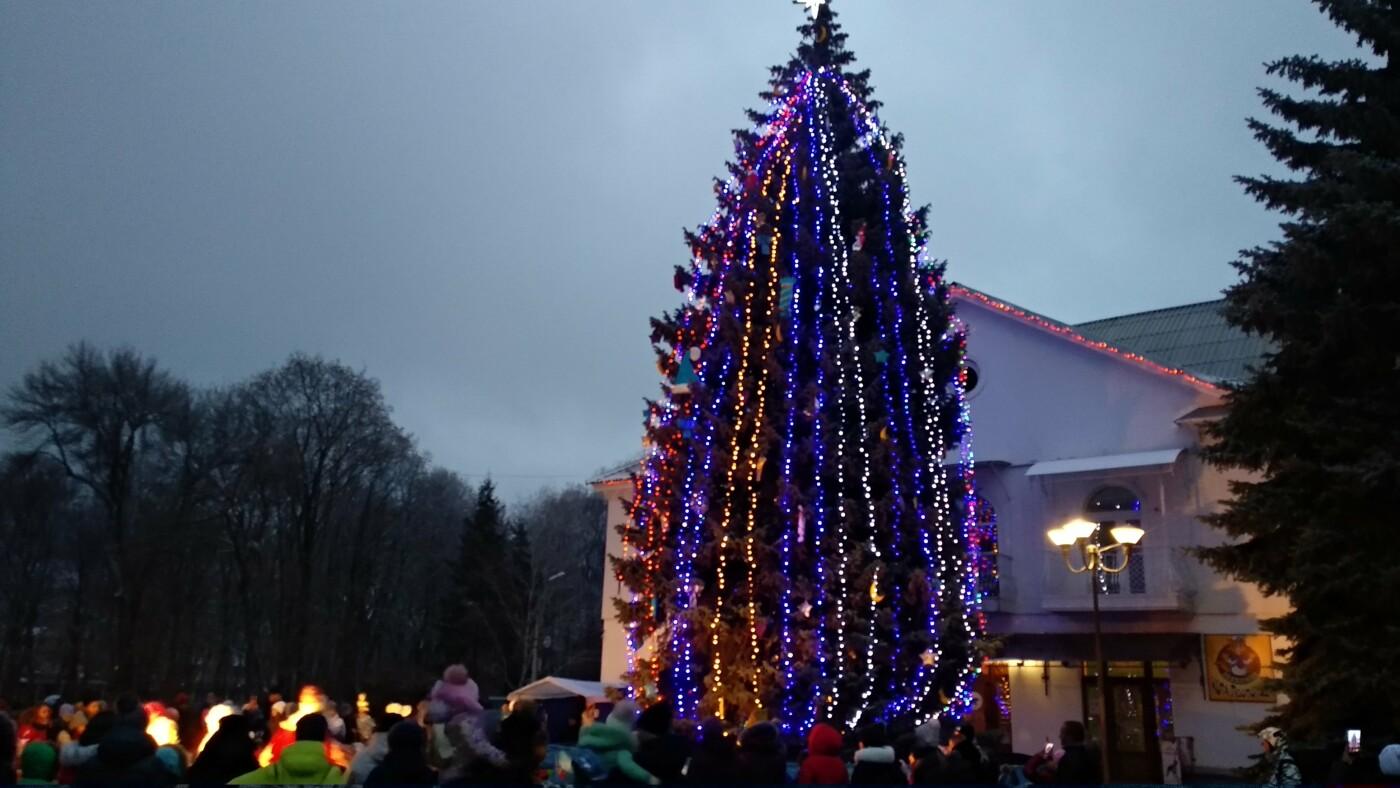 В Лозовой одновременно открыли 2 новогодние ёлки, фото-23