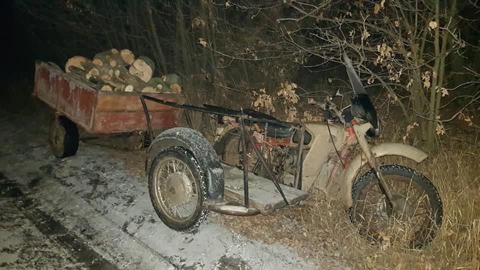 Убытки на 70 тысяч: на Лозовщине поймали «чёрных лесорубов», фото-9