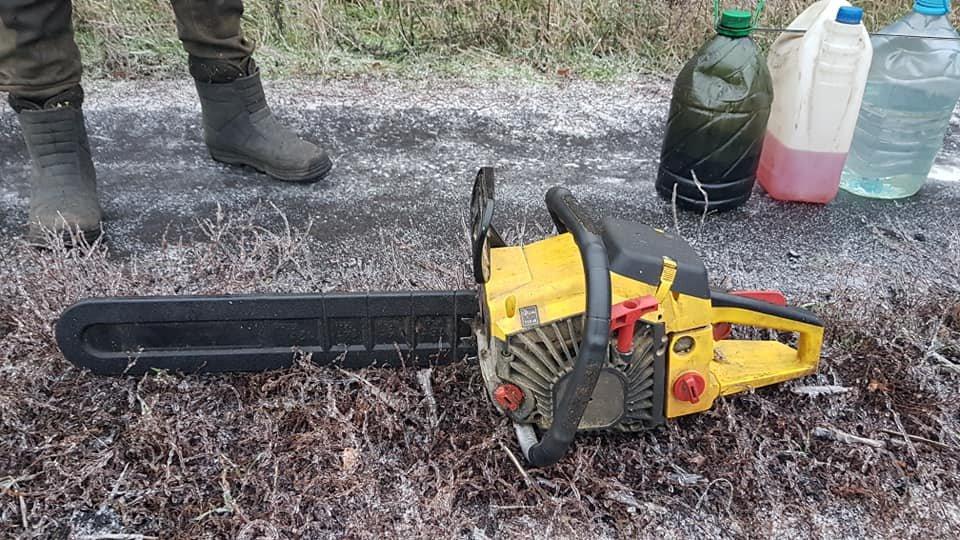 Убытки на 70 тысяч: на Лозовщине поймали «чёрных лесорубов», фото-2