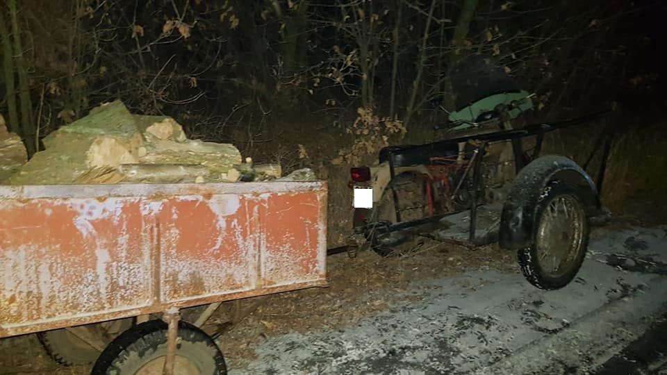 Убытки на 70 тысяч: на Лозовщине поймали «чёрных лесорубов», фото-5