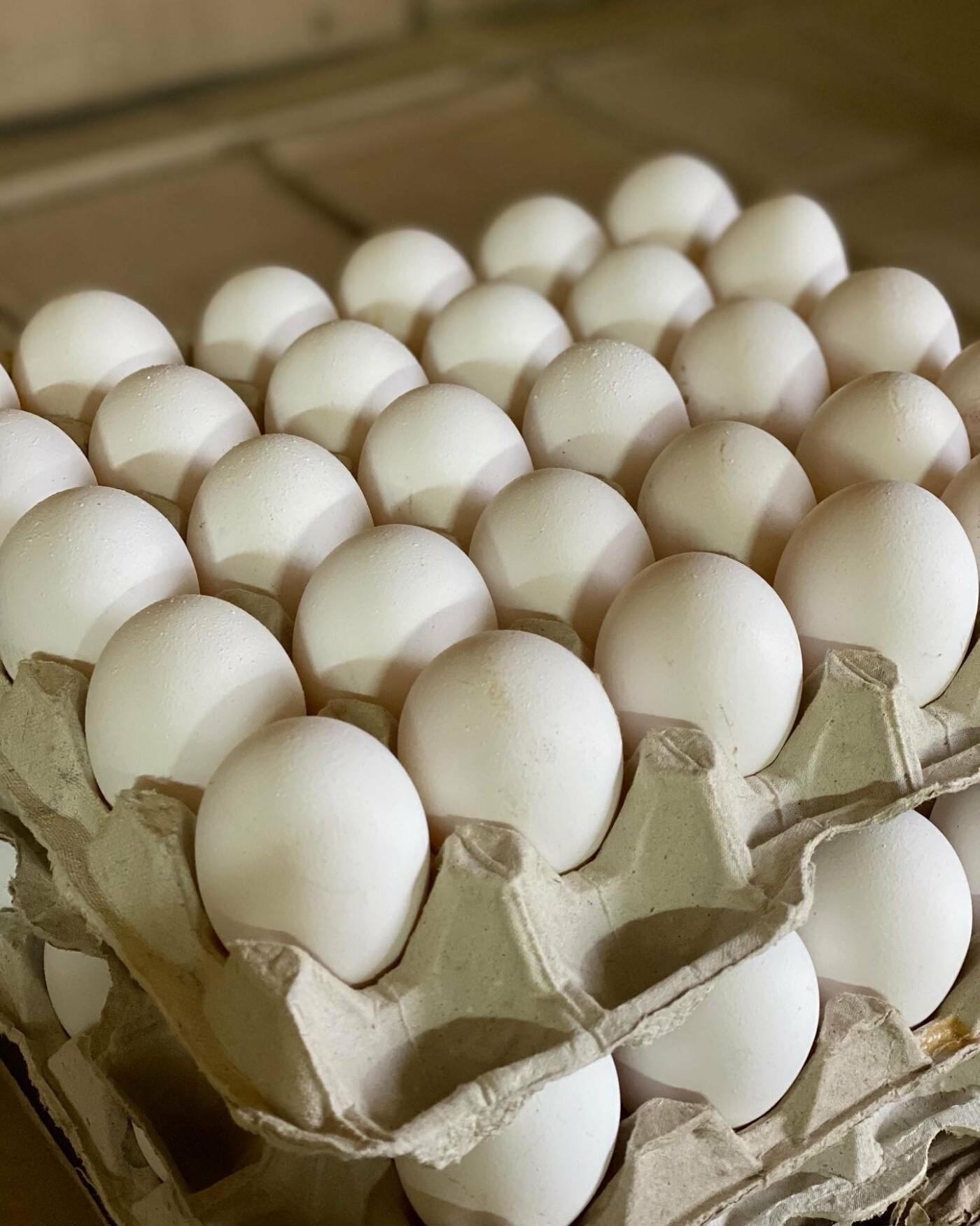 «Робимо, як для себе»: курятина та напівфабрикати з сімейної ферми ChickenBoom, фото-12