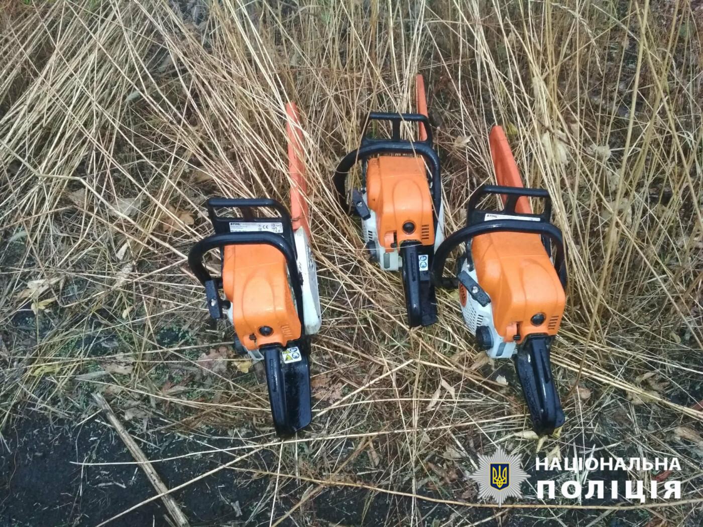 Поспилювали дерев на 109 тисяч гривень: на Лозівщині чоловіки незаконно рубали ліс, фото-3