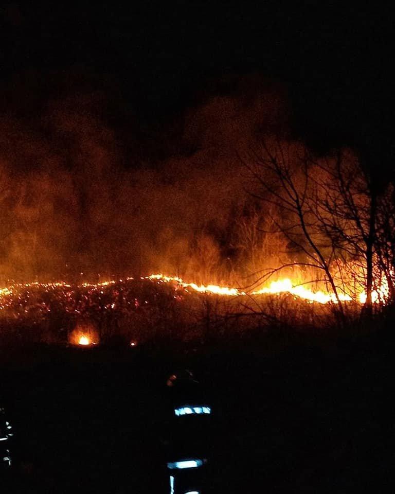 За тиждень лозівських рятувальників 6 разів викликали гасити сухостій, фото-4