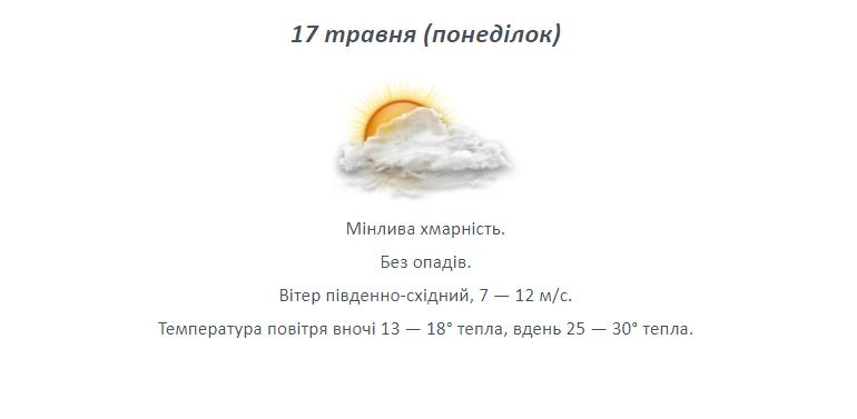 Різке підвищення температури: на Лозівщину йде спека, фото-5