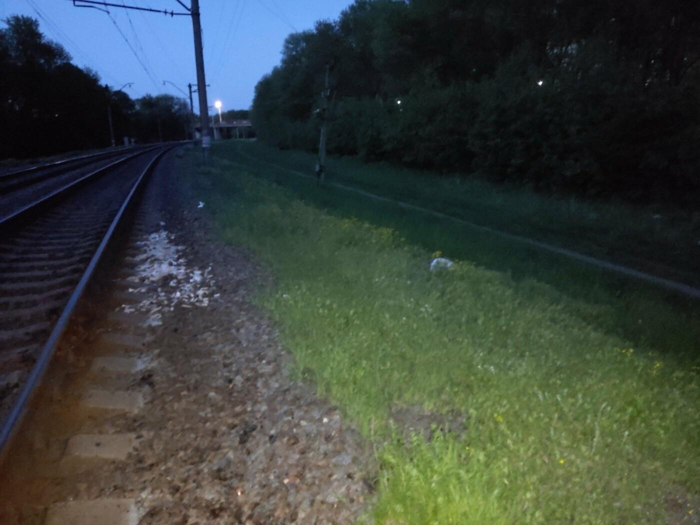 Біля станції Лозова жінка загинула під колесами потягу, фото-1