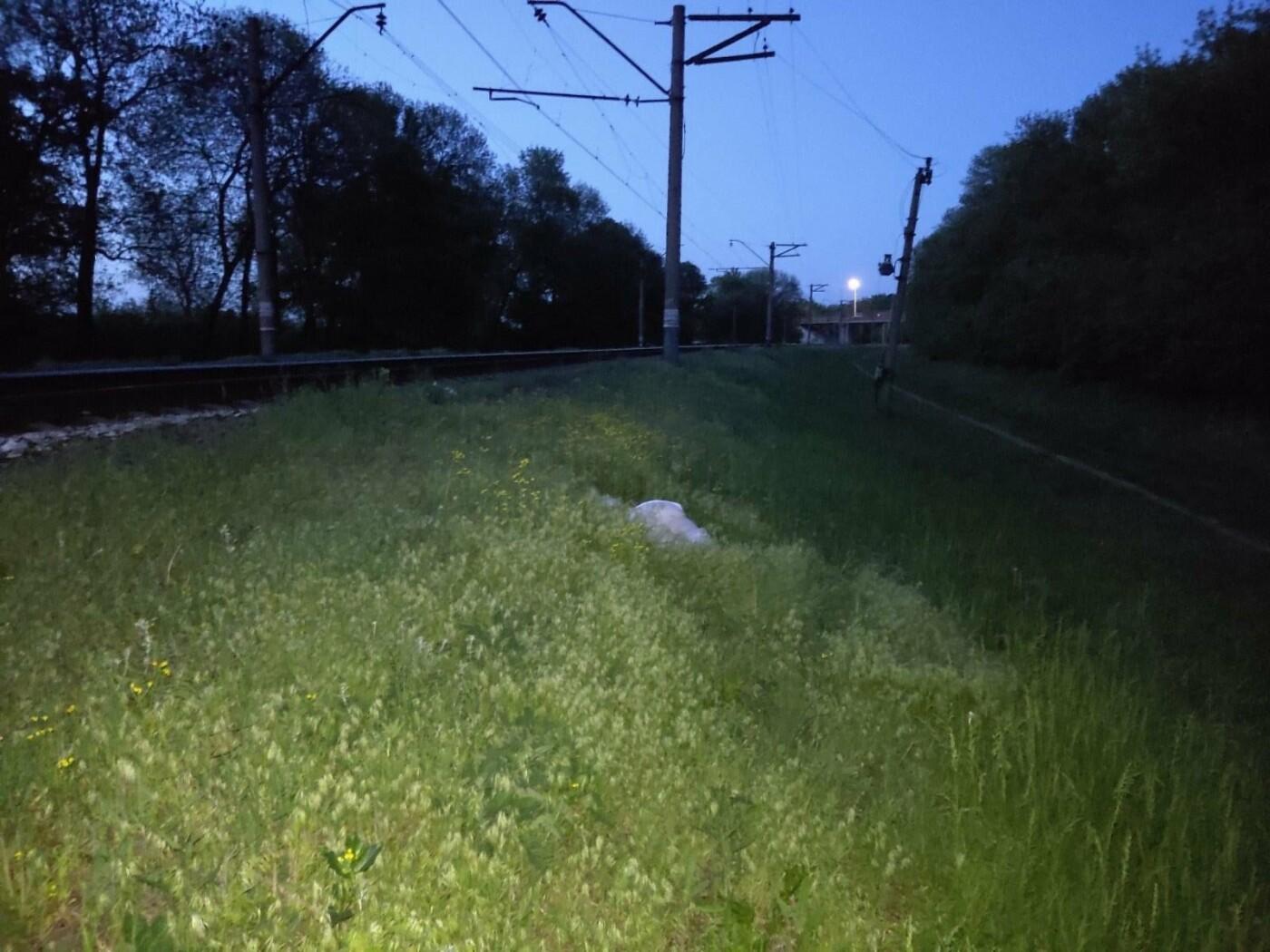 Біля станції Лозова жінка загинула під колесами потягу, фото-6