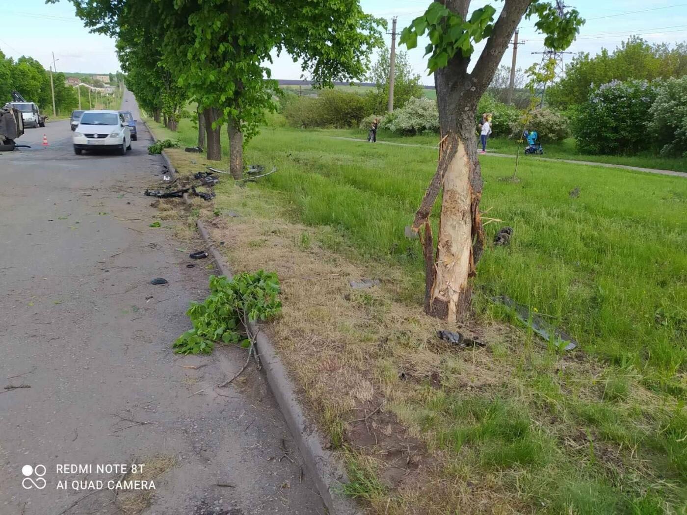 Врізався у дерево та перекинувся: у Лозовій сталася ДТП , фото-2