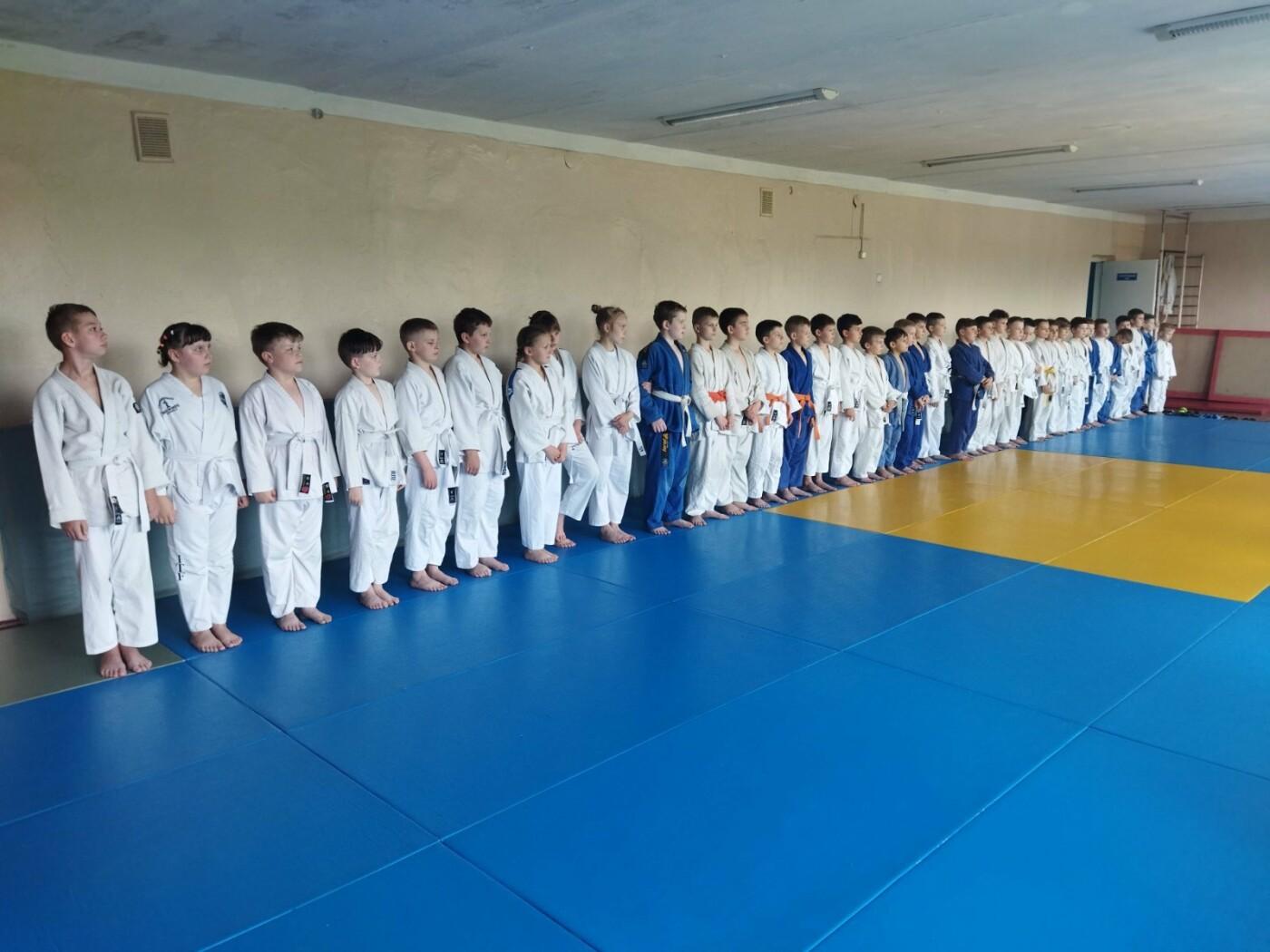 Підсумкові перемоги: у лозівській ДЮСШ «Олімпія» пройшов Чемпіонат з дзюдо, фото-3